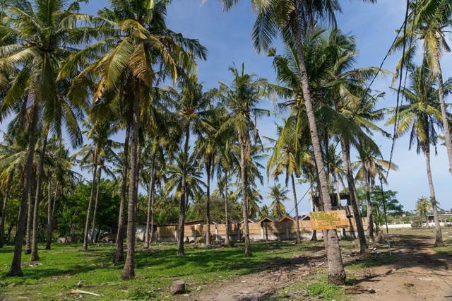 Как добраться до острова Траванган в Индонезии