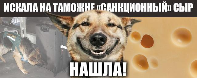 Ввоз продуктов в Россию, список запрещенных товаров